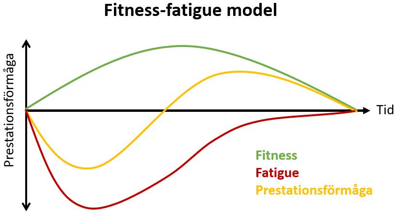 Fitness-fatigue model